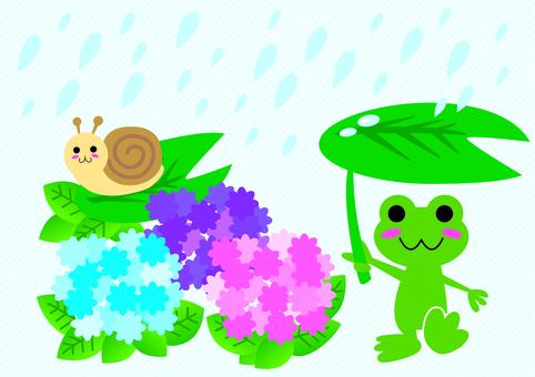 Snail of rainy season and snail