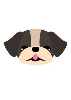 Dog 25