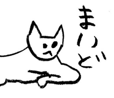 Maiko cat