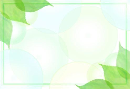 Fresh green fresh frame