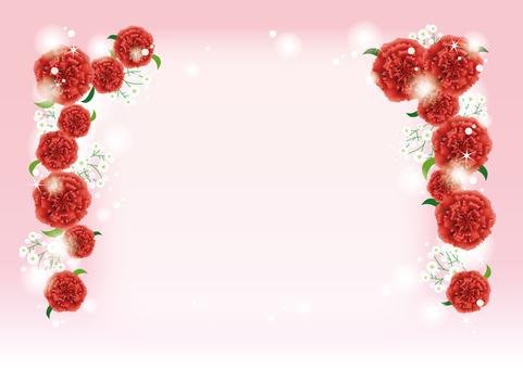 Red carnation frame