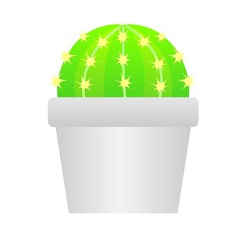 Houseplant - Ball Cactus