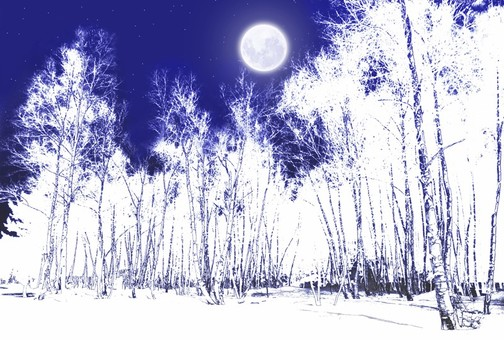 Snowy moonlit night