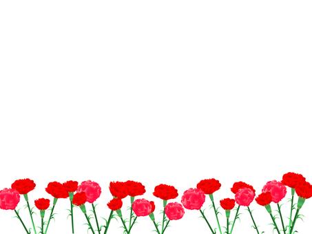 Carnation frame 02