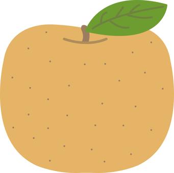 【Food】 Pear