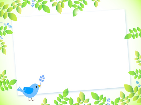 Fresh green and small bird board, blue