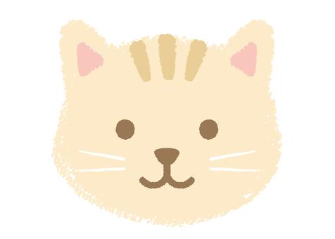 고양이 (1)