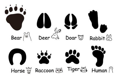 Footprint set of various animals