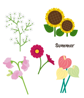Summer flowers summary