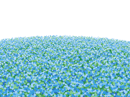 Blue flower field