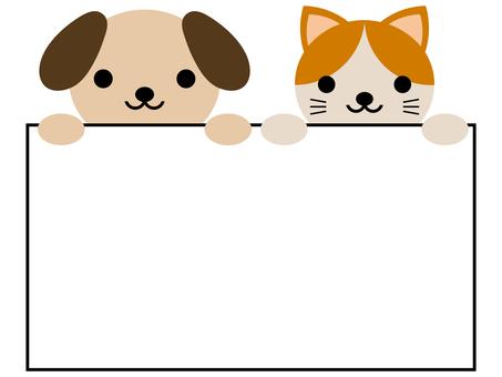 고양이 메모 프레임 동물