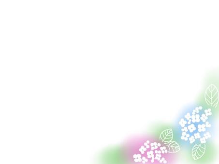 Hydrangea (colorful)