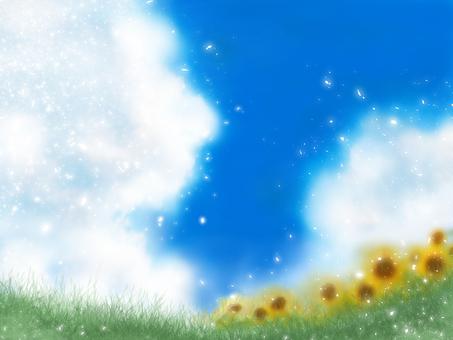 Summer sky and sunflower