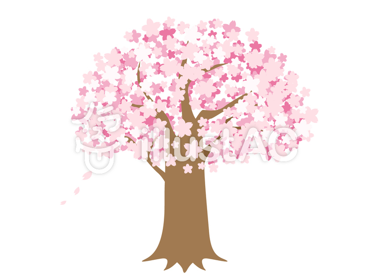 桜の木イラスト No 115080無料イラストならイラストac
