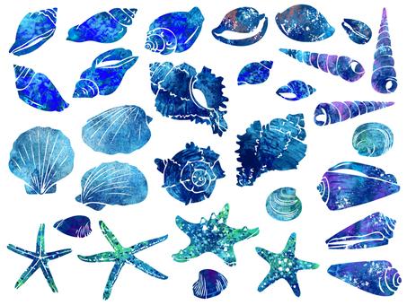 Illustration 002 shell