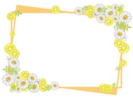 Lemon and Daisy 02