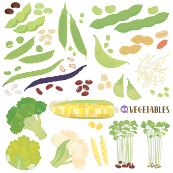 Vegetable set Legume · Other edition