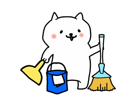 White Cat Cleaning 2