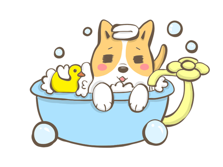 Corgi to relax in the bath