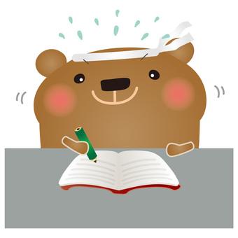 Studying Bear for Bear