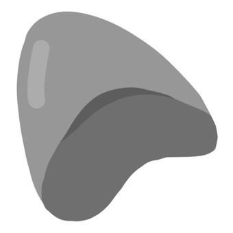 巨齒鯊牙齒化石