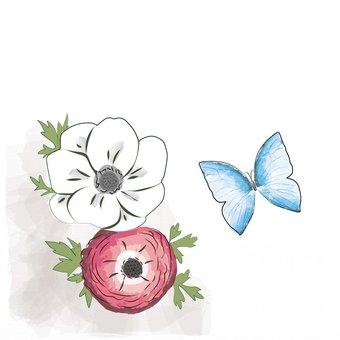 アネモネと青い蝶
