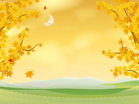 Fall sky 04