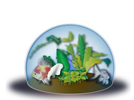 Aquarium 28