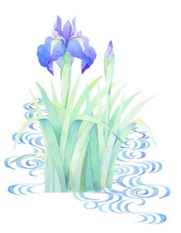 Iris water ★ 0314-F
