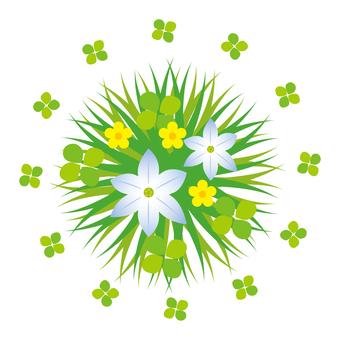 Grass flower and four leaf clover