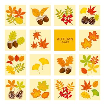 0842_autumn