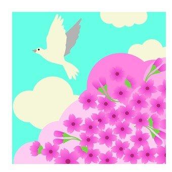 벚꽃 나무와 비둘기
