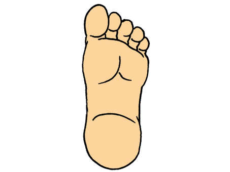 Illustration of the soles of the feet