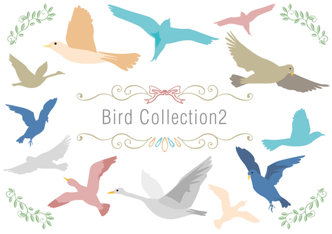 Set Material 009 Bird