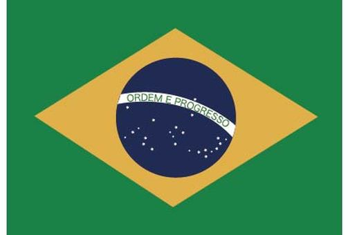World Cup Brazilian flag