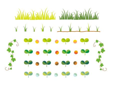 Plant set