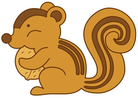 Squirrel 4c