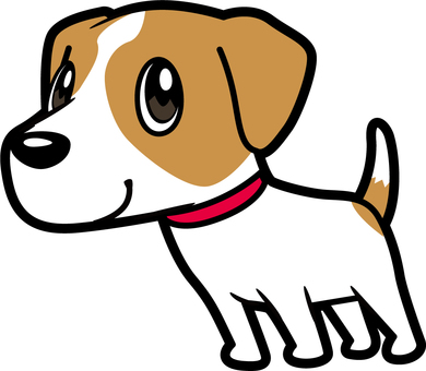 Dog _ Jack Russell Terrier