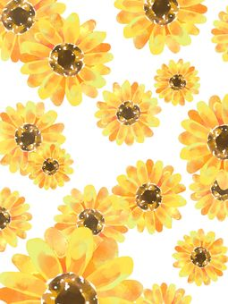Sunflower background material 01