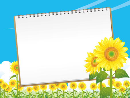 Summer sunflower field and sketchbook background 03