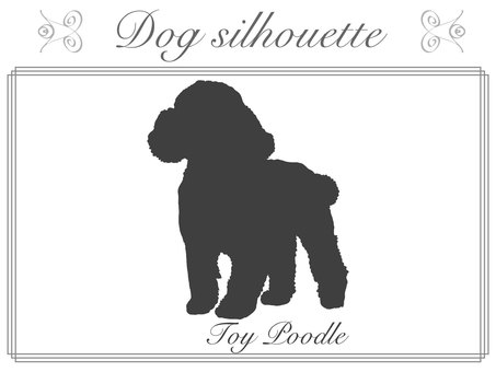 Silhouette-ToyPoodle