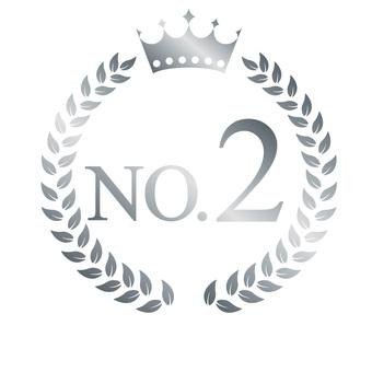 Silver Emblem NO 2-2
