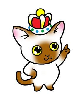 삿대질 고양이 4