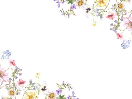 Flower frame 147 - Flower frame of small flowers in the garden