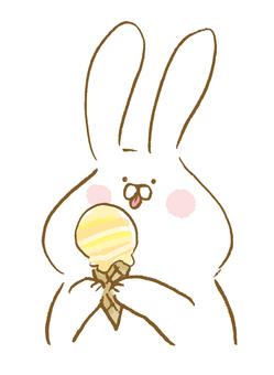 Rabbit to eat ice cream