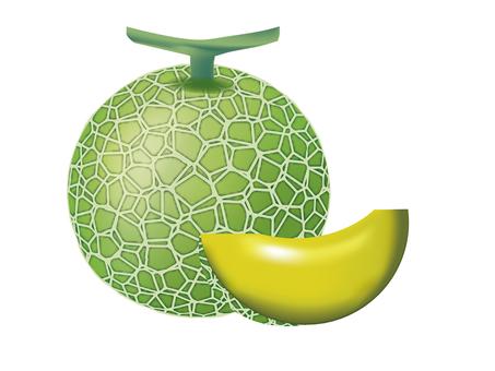 Melon 01