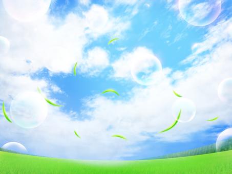 Lawn blue sky soap bubble leaf backdrop wallpaper frame