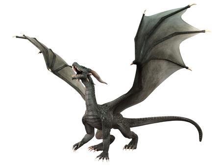 グレイ・ドラゴンの咆哮
