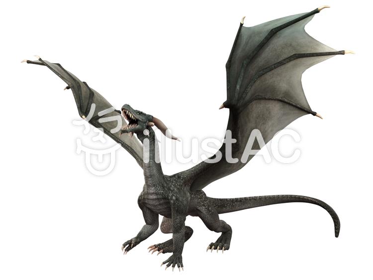 グレイ・ドラゴンの咆哮のイラスト