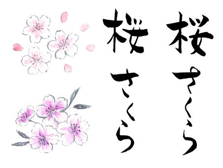 桜 さくら 墨文字墨絵セット